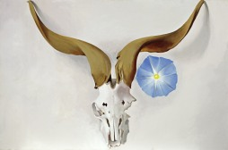 Georgia O'Keeffe Ram's Head, Blue Morning Glory 1938 oil on canvas 50.8 x 76.2 cm Georgia O'Keeffe Museum Gift of The Burnett Foundation © Georgia O'Keeffe Museum