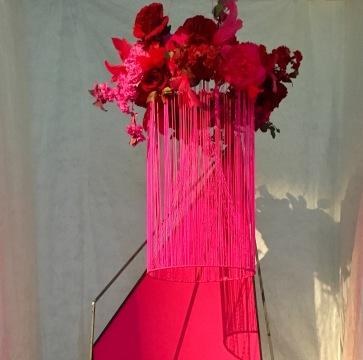 Fleur (Armadale) 'Highly Strung'