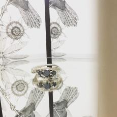 Jeweller on display