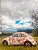 """Oh look, it's a cute car somewhere it shouldn't be!"" Lots of these on the country roads of Tassie."