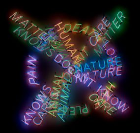 Bruce Nauman. Human Nature/Life Death/Knows Doesn't Know. 1983. Neon tubing with clear glass tubing suspension frames, 107 1/2 × 107 × 5 3/4″ (273.1 × 271.8 × 14.6 cm). Los Angeles County Museum of Art, Modern and Contemporary Art Council Fund. © 2018 Bruce Nauman/Artists Rights Society (ARS), New York. Photo © Museum Associates/LACMA